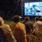 Kino bez granic